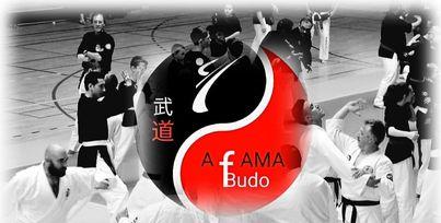 17/07/2021 : Stage AFAMA BUDO